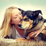 Die Tierversicherung